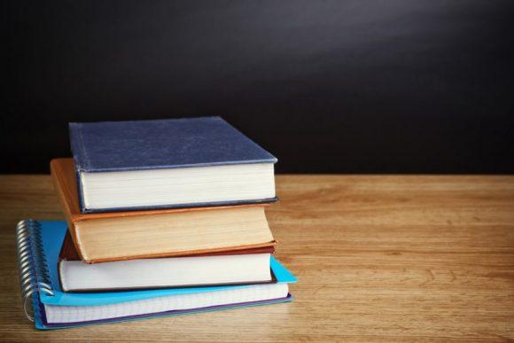 หลักสูตรการศึกษาที่เปิดสอน